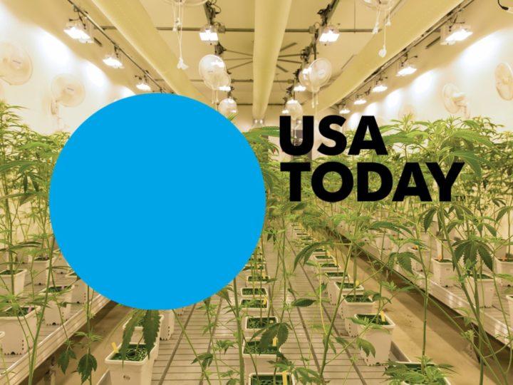 USA Today: Canndescent Opens Marijuana Cultivation Facility