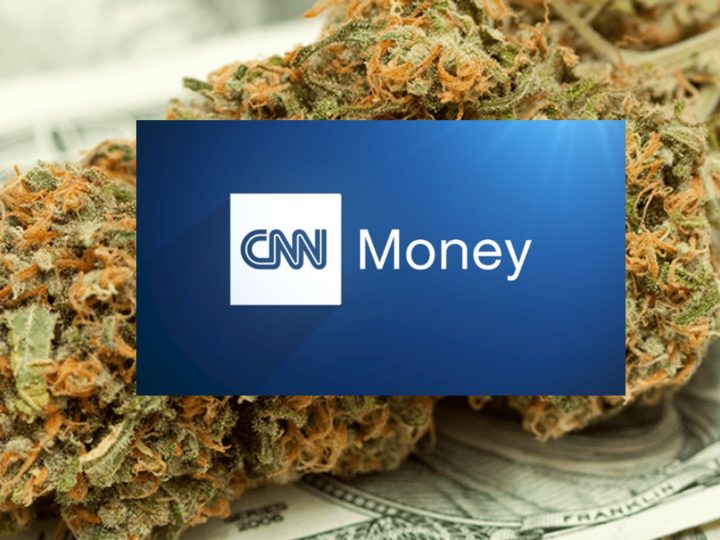 CNN Money: Marijuana businesses worry about Trump, but expect to prevail