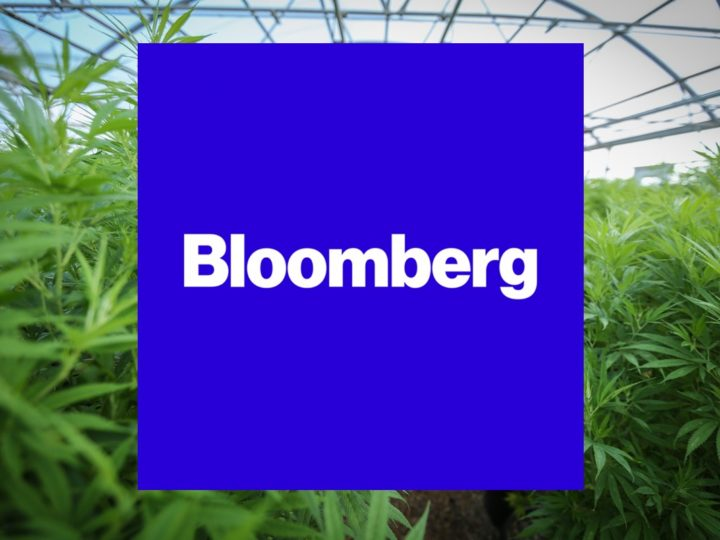 Bloomberg: Hollyweed: Legal Pot Gains Foothold in Rich California Market