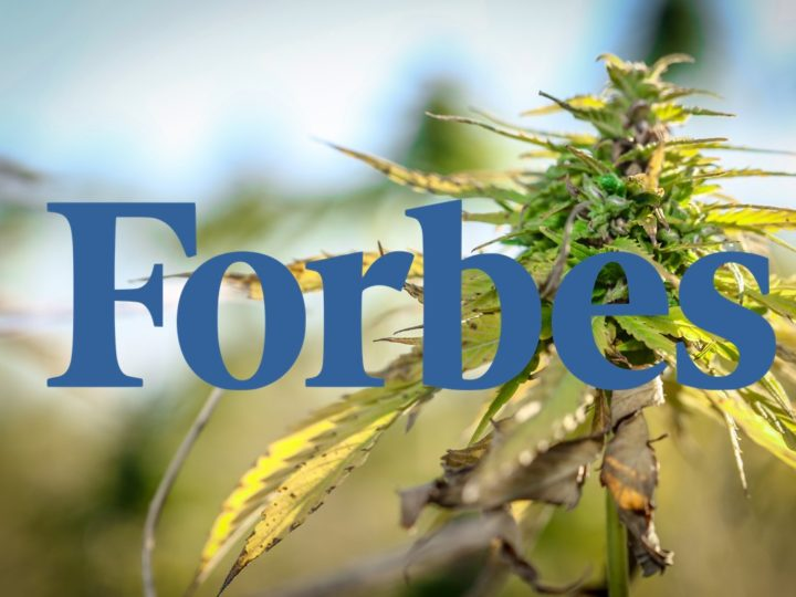 Forbes: Hemp Cannabis Product Sales Projected To Hit $1 Billion In 3 Years