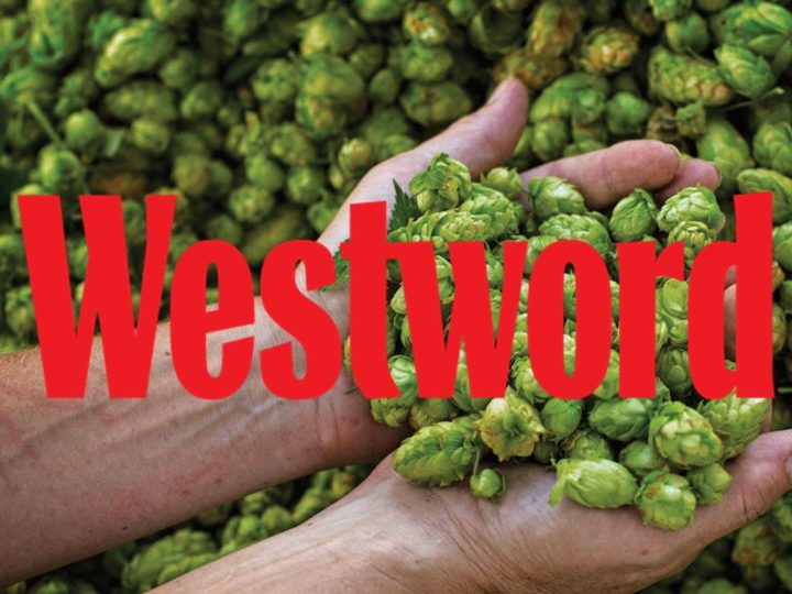 Westword: World's First Non-Cannabis CBD Oil Is High on Hops