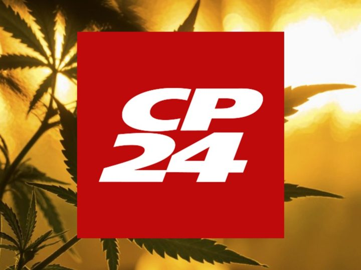 CP 24 Toronto: Herb CEO and Founder Matt Gray joins Toronto's CP24 to discuss Cannabis Legalization in Canada