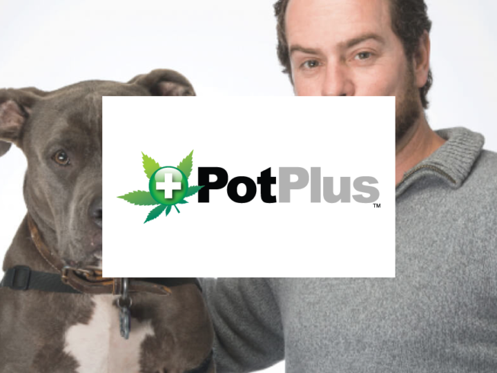 CBD & Wellness For Animals